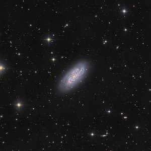 NGC 1792 Galaxy in Columba
