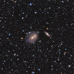 NGC2292-3-5 Galaxies in CanisMajor