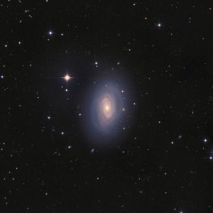 NGC4450 Galaxy in Coma Berenices