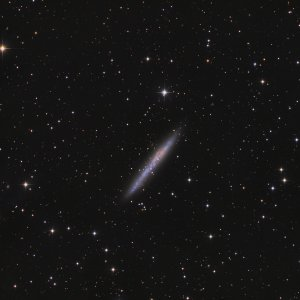 IC 5052 Galaxy in Pavo