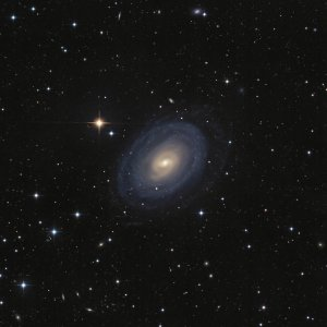 NGC 1371 Galaxy in Fornax