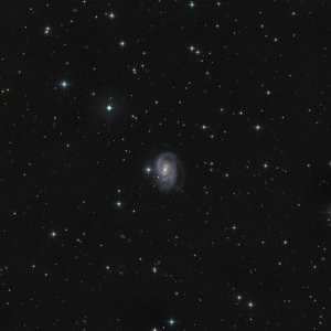 NGC1832 Galaxy in Lepus