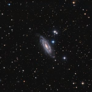 NGC1964 Galaxy in Lepus