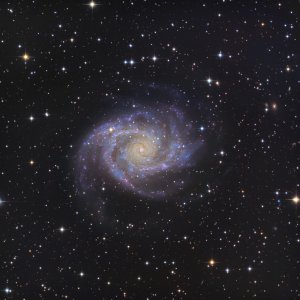 NGC2997 The Grand Spiral in Antila