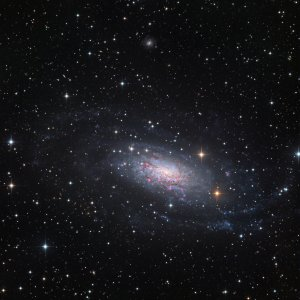 NGC 3621 Galaxy in Hydra