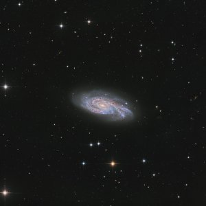 NGC908 GALAXY IN CETUS